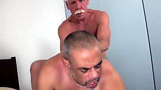 Grey wolf sucks black mature before fucking